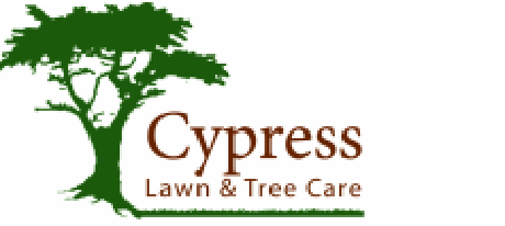 Cypress Lawn and Tree | Cypress Lawn and Tree